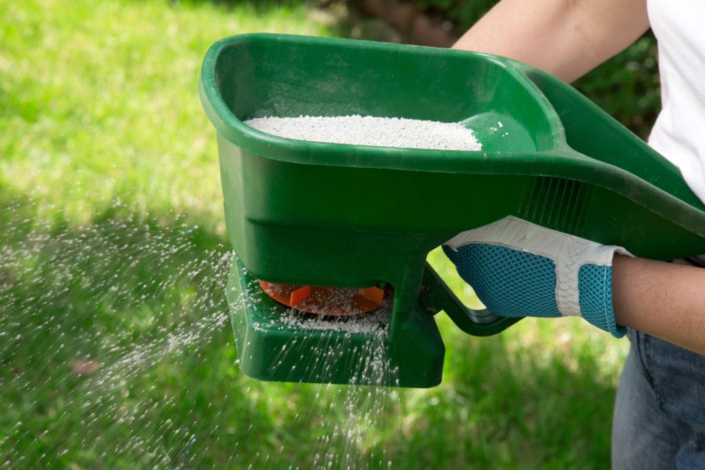 lawn seed feeder