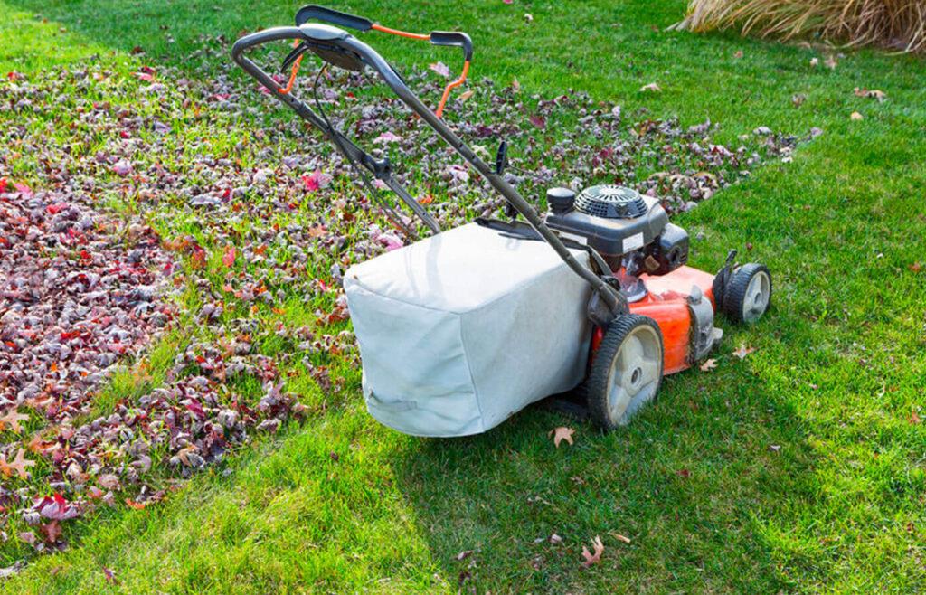 mowing lawn in fall